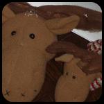 Moose Heads